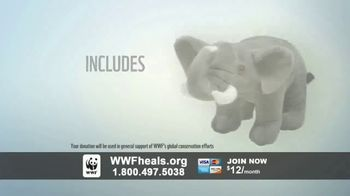 World Wildlife Fund TV Spot, 'A World Without Elephants' Song by Louis Armstrong - Thumbnail 9