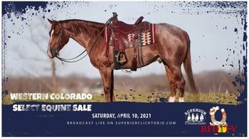 Superior Livestock Auction TV Spot, 'Western Colorado Select Equine Sale'