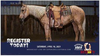 Superior Livestock Auction TV Spot, 'Western Colorado Select Equine Sale' - Thumbnail 7