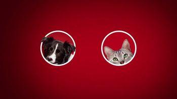 Purina ONE TV Spot, '28 Days: True Instinct Formulas for Dogs' - Thumbnail 1
