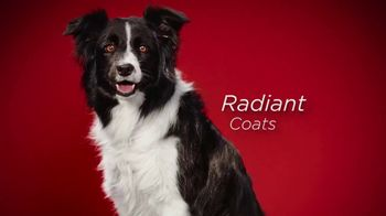 Purina ONE TV Spot, '28 Days: True Instinct Formulas for Dogs' - Thumbnail 6