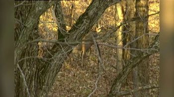 Bushnell Laser Rangefinders TV Spot, 'Bushnell's Anniversary of Accuracy: 25 Years'