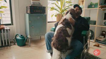 The Farmer's Dog TV Spot, 'Remi' - Thumbnail 1