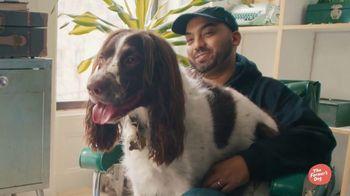 The Farmer's Dog TV Spot, 'Remi' - Thumbnail 2