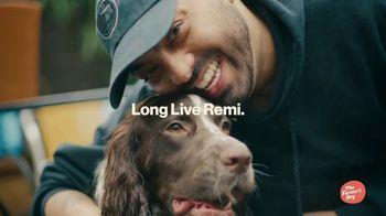The Farmer's Dog TV Spot, 'Remi' - Thumbnail 9