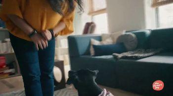 The Farmer's Dog TV Spot, 'Actual Food' - Thumbnail 4