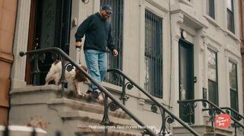 The Farmer's Dog TV Spot, 'Long Live Dogs' - Thumbnail 1