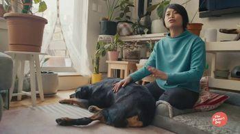 The Farmer's Dog TV Spot, 'Long Live Dogs' - Thumbnail 3