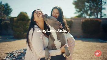 The Farmer's Dog TV Spot, 'Long Live Dogs' - Thumbnail 6