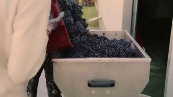 The Federalist Wine TV Spot, 'Make It Like America'