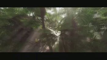 Applebee's TV Spot, 'Jungle Cruise: Rock the Boat' Song by The Hues Corporation - Thumbnail 1