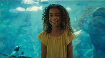 San Diego Zoo TV Spot, 'Smiles: Welcome Back'