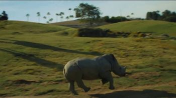 San Diego Zoo Safari Park TV Spot, 'Make Memories and a Difference: Welcome Back' - Thumbnail 4