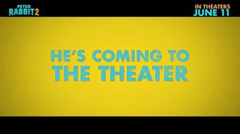 Peter Rabbit 2: The Runaway - Alternate Trailer 21
