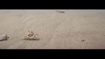 Corona TV Spot, 'Protect Our Beaches' Song by Radical Face - Thumbnail 5