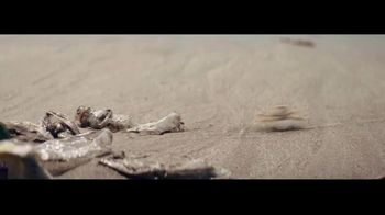 Corona TV Spot, 'Protect Our Beaches' Song by Radical Face - Thumbnail 6