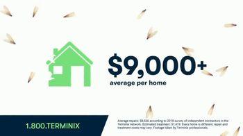 Terminix TV Spot, 'Termite Swarms'