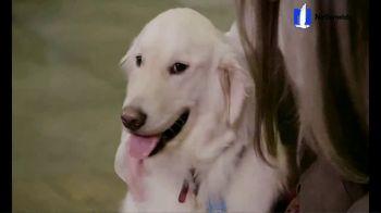 Nationwide Pet Insurance TV Spot, 'AKC Heroes'