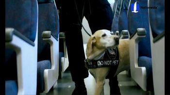 Nationwide Pet Insurance TV Spot, 'AKC Heroes' - Thumbnail 3