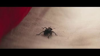 Spectracide Triazicide Insect Killer TV Spot, 'Your Yard' - Thumbnail 3