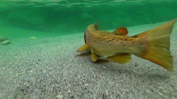 Scheels TV Spot, 'Spring Fishing Season'