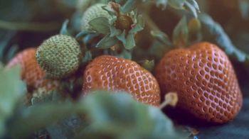 Nutrien Ag Solutions TV Spot, 'For Agriculture' - Thumbnail 6