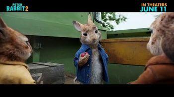 Peter Rabbit 2: The Runaway - Alternate Trailer 10