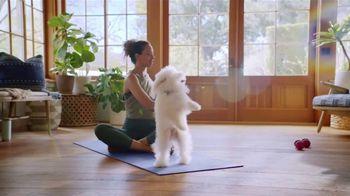 Blue Buffalo Blue Stix TV Spot, 'Treat Up, America: Yoga' - Thumbnail 3