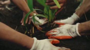 The Hawaiian Islands TV Spot, 'Habitat Stewardship: Kia'i Collier' - Thumbnail 7
