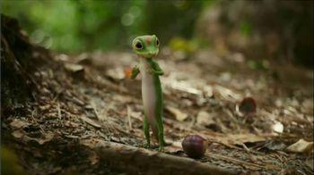 GEICO TV Spot, 'The Gecko Takes a Stroll'