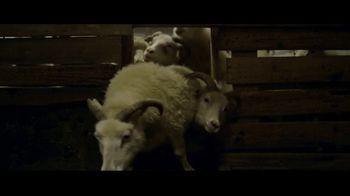 Lamb - Thumbnail 9