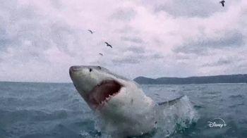 Disney+ TV Spot, 'Playing With Sharks' - Thumbnail 4