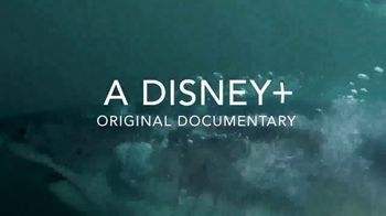 Disney+ TV Spot, 'Playing With Sharks' - Thumbnail 5