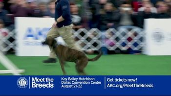 AKC Meet the Breeds TV Spot, 'August 2021: Kay Bailey Hutchinson Dallas Convention Center' - Thumbnail 5