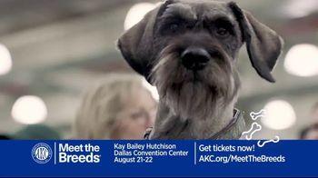 AKC Meet the Breeds TV Spot, 'August 2021: Kay Bailey Hutchinson Dallas Convention Center' - Thumbnail 7