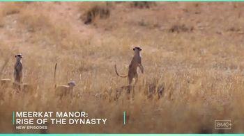 AMC+ TV Spot, 'A Wild Time' - Thumbnail 6