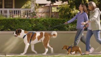 Cologuard TV Spot, 'Big Dog, Little Dog' - Thumbnail 2