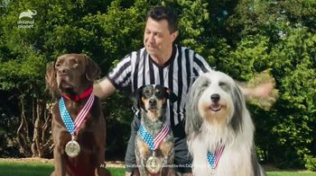 Dairy Queen Reese's Extreme Blizzard TV Spot, 'Animal Planet: Mix It Up Moments' Featuring Dan Schachner - Thumbnail 8