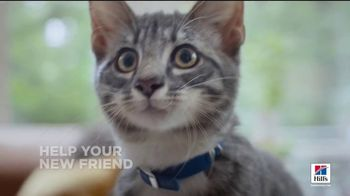Hill's Pet Nutrition TV Spot, 'A Step Ahead: The Right Food'