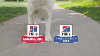Hill's Pet Nutrition TV Spot, 'A Step Ahead: The Right Food' - Thumbnail 8
