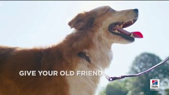 Hill's Pet Nutrition TV Spot, 'A Step Ahead: The Right Food' - Thumbnail 3