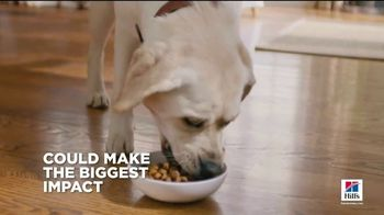 Hill's Pet Nutrition TV Spot, 'A Step Ahead: The Right Food' - Thumbnail 4
