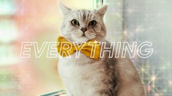 Google Chromebook TV Spot, 'Find Things Instantly With the Everything Button' Song by HMLTD - Thumbnail 8