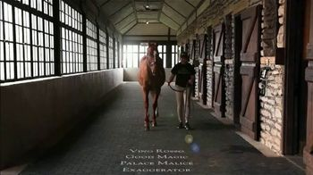 Hill 'n' Dale Farms TV Spot, 'Curlin: The Classic Sire'