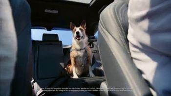 Toyota Venza TV Spot, 'Dear Freedom: Onward' [T1] - Thumbnail 3