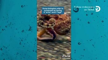 TikTok TV Spot, 'Discovery Channel: Octopus' - Thumbnail 1