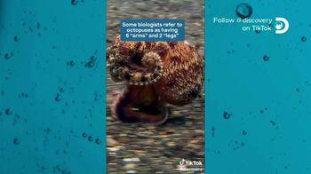 TikTok TV Spot, 'Discovery Channel: Octopus' - Thumbnail 2
