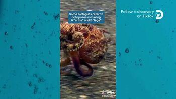 TikTok TV Spot, 'Discovery Channel: Octopus' - Thumbnail 3