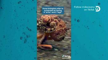 TikTok TV Spot, 'Discovery Channel: Octopus' - Thumbnail 4