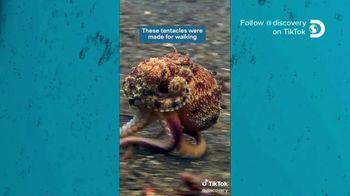 TikTok TV Spot, 'Discovery Channel: Octopus' - Thumbnail 6